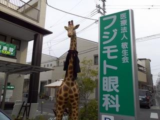 フジモト眼科キリン.JPG